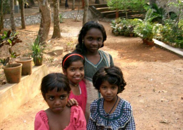 Elefanten auf der Straße gehören in Indien dazu